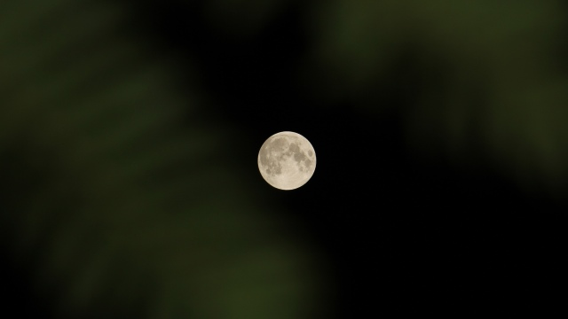 Full Moon, Pre-Eclipse 2014-10-07