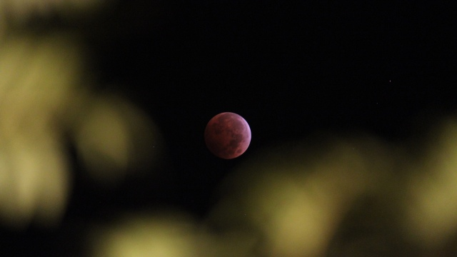 Blood Moon, October 8, 2014.